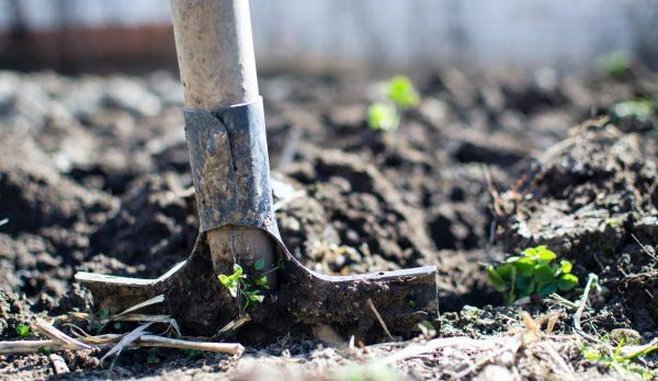 Euroclean Bahçe Hizmeleri
